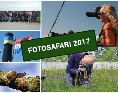 fotosafari-2017
