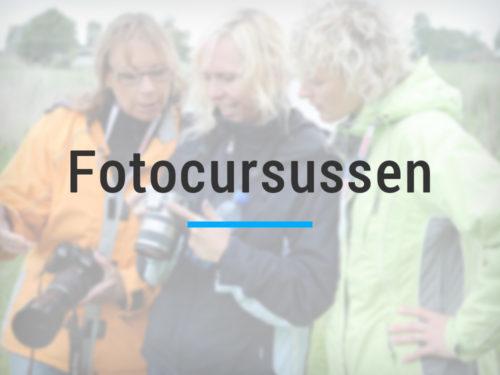 Fotocursussen