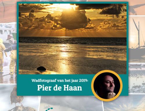 Pier de Haan is Wadfotograaf van het jaar!